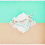 pingpong-logo-1024